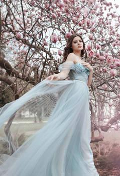 Magnolia Blososm