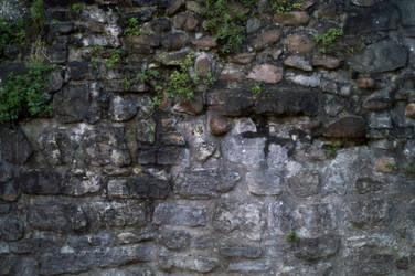 Castle Wall (Stock) by jeffkingston
