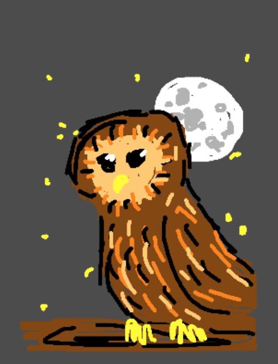 random barn owl from harry potter by musky husky art on deviantart