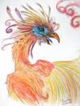 Hoatzin Phoenix