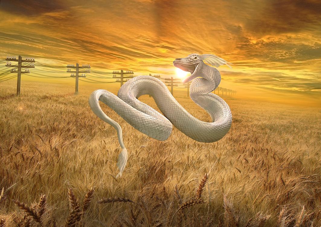 Harvest blessing by Lesard