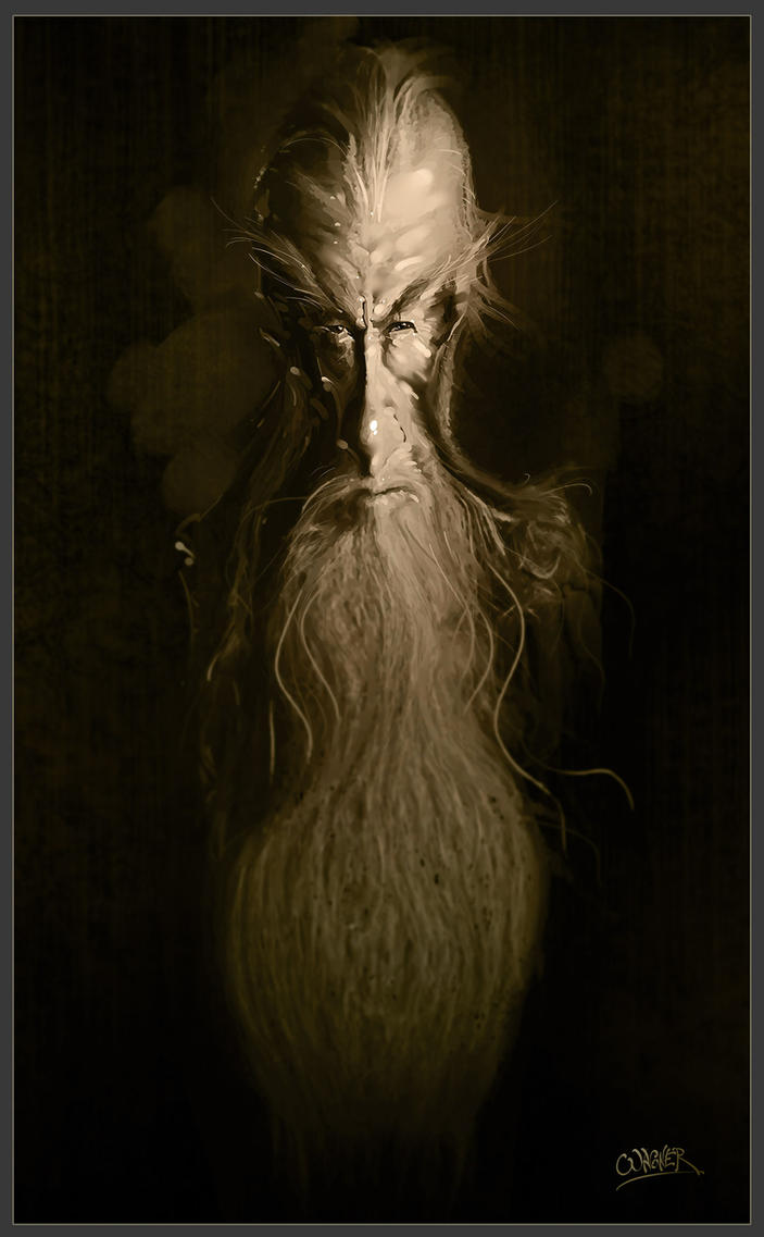 Gandalf by wagnerf