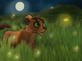 Kopa and the Fireflies
