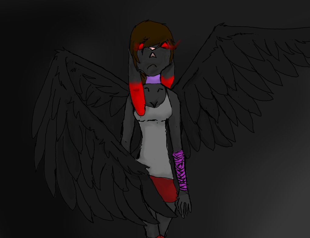 I drew this for Shadow :3 by animewolfgirl245