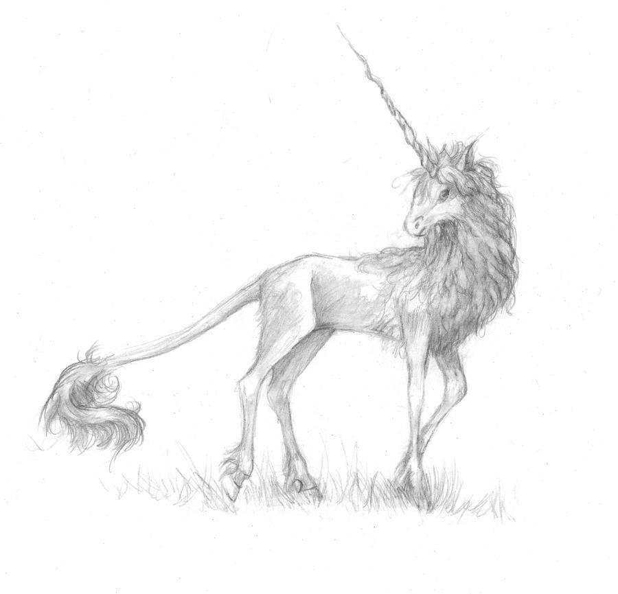 unicorn by queenofeagles