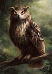 Eagle Owl (colour)