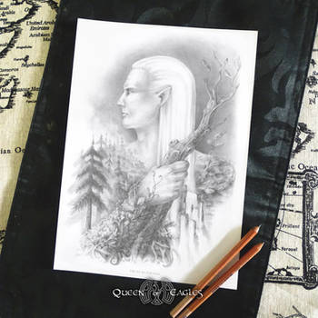 the Elf - greyscale colouring page