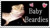 Bearded Dragon love by pandoras-rose