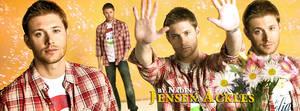 Jensen (Banner for Timeline)