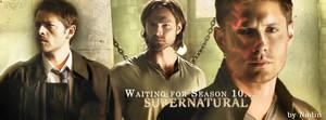 Waiting for Season 10 (Banner for FB)