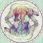 Polar circles