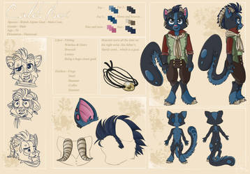 Character's reference sheet by Karacoon