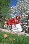 Rurouni Kenshin 7