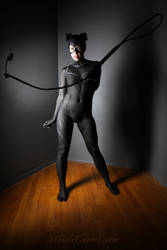 Catwoman body paint- whip it good by shelle-chii