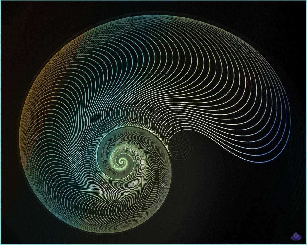 Nautilus by zweeZwyy