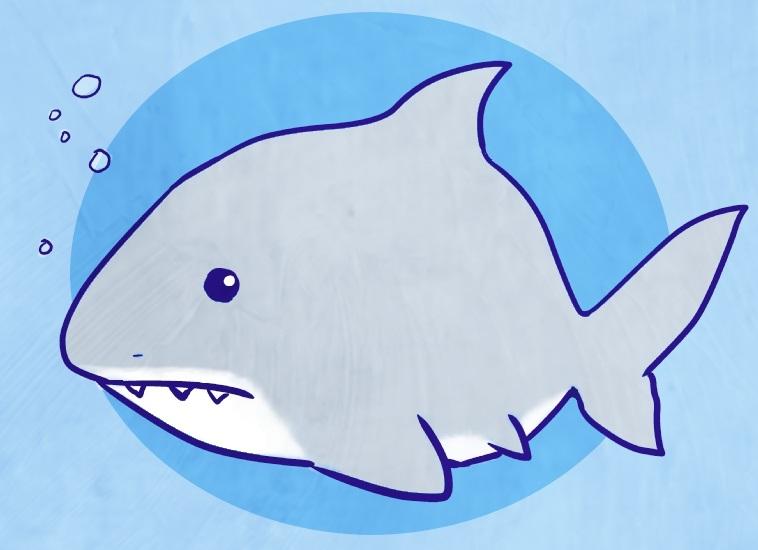 Cute Shark  Cute Shark