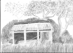 The Hayshed