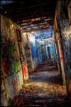 Corridor of madness. Ward 21
