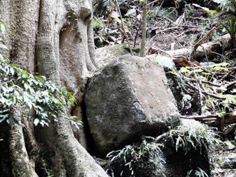 Ancient stonework? 2