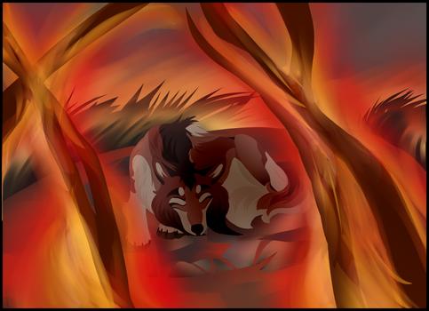 Dreams of Fire (dotw)