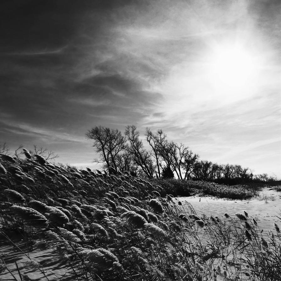 Canton Shore by PariahLycan