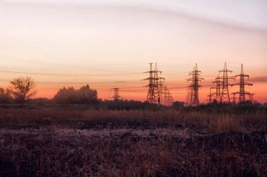 At the dawn
