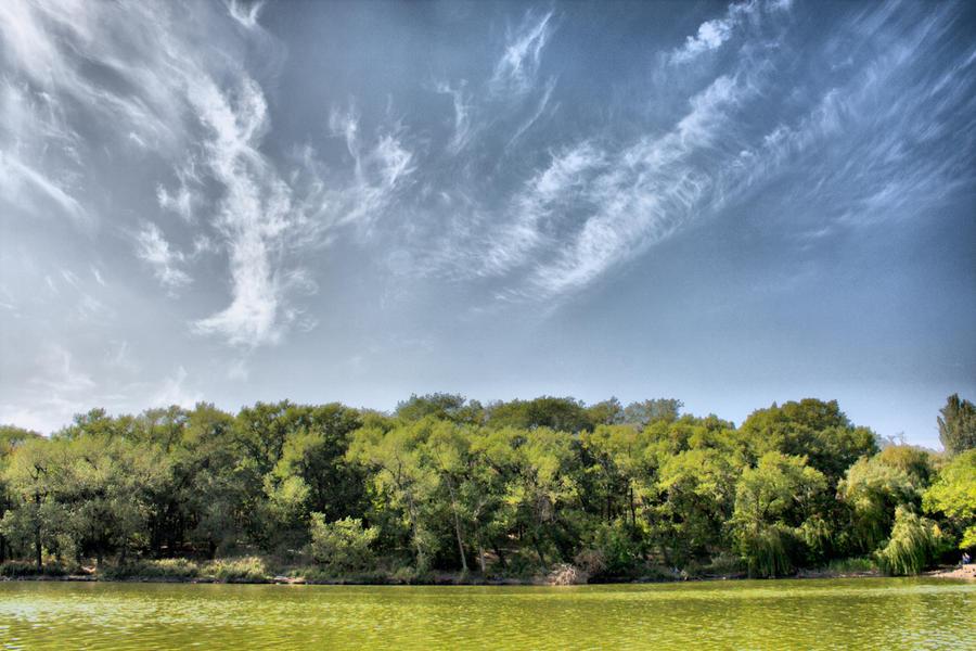 Фото: Донецкий городской пруд