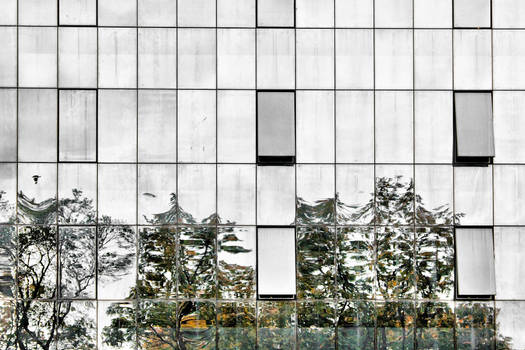 Reflections, Donetsk