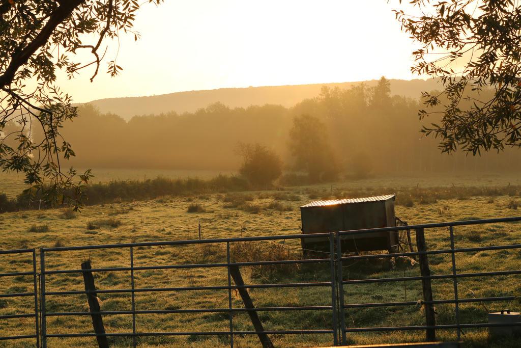 A morning walk in Bourgone II by Morneion