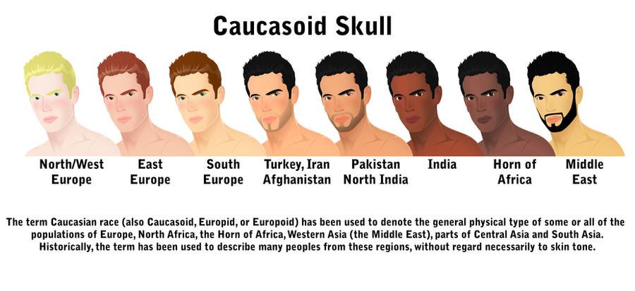 caucasoid_skull_by_dizneykhan-d57ccow.jp