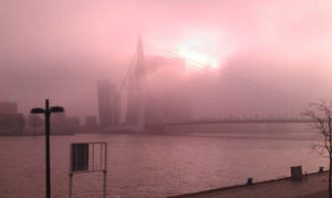 Mist by Saskle