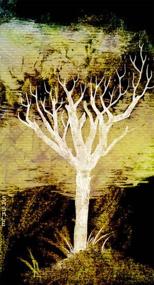 Twili Tree