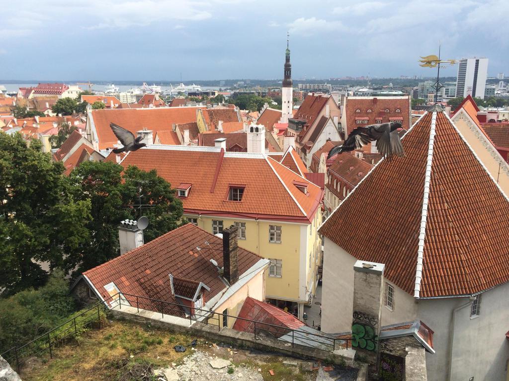 Tallinn by Saskle