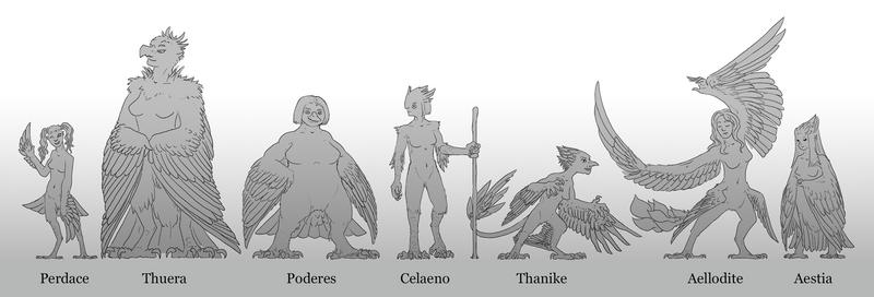 Final Harpy Lineup