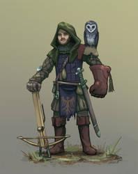 Falconeer Knight