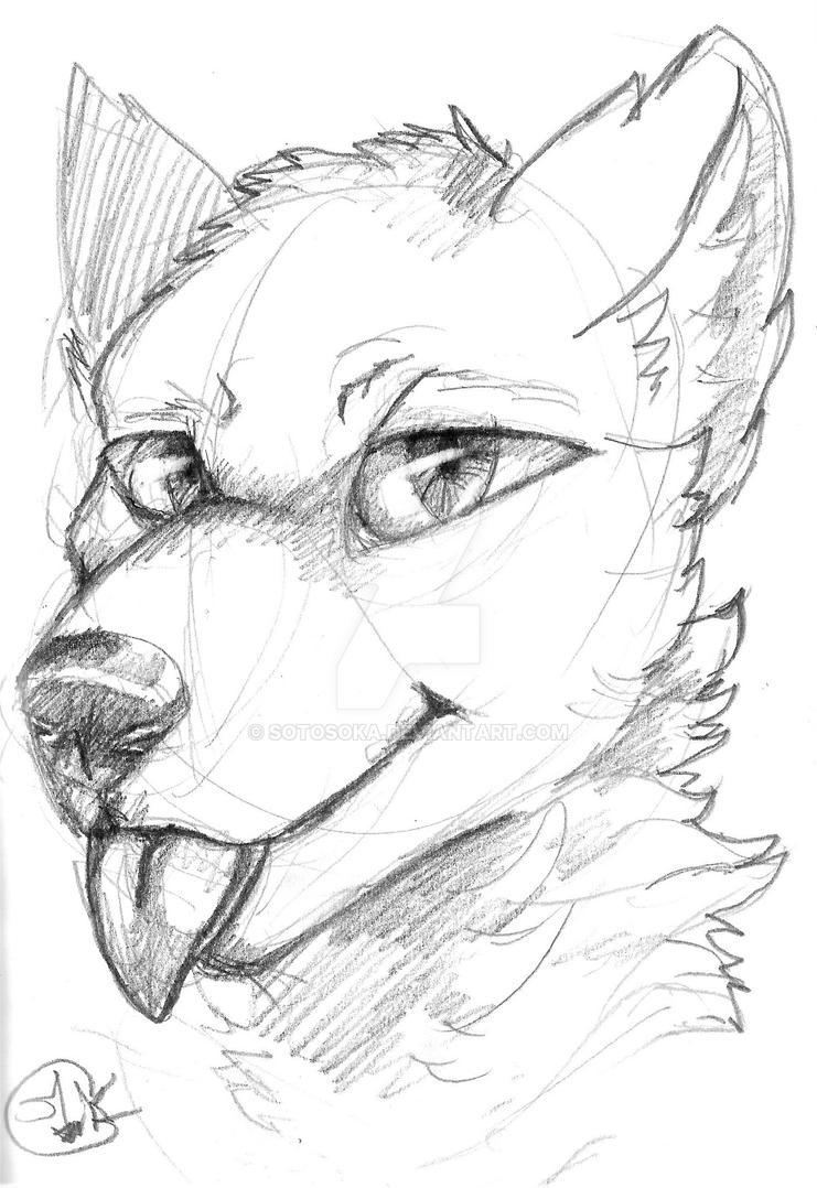 furry-sketch by sotosoka