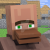 Villager Duck emote