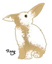 Dotted Rabbit by JustRagz