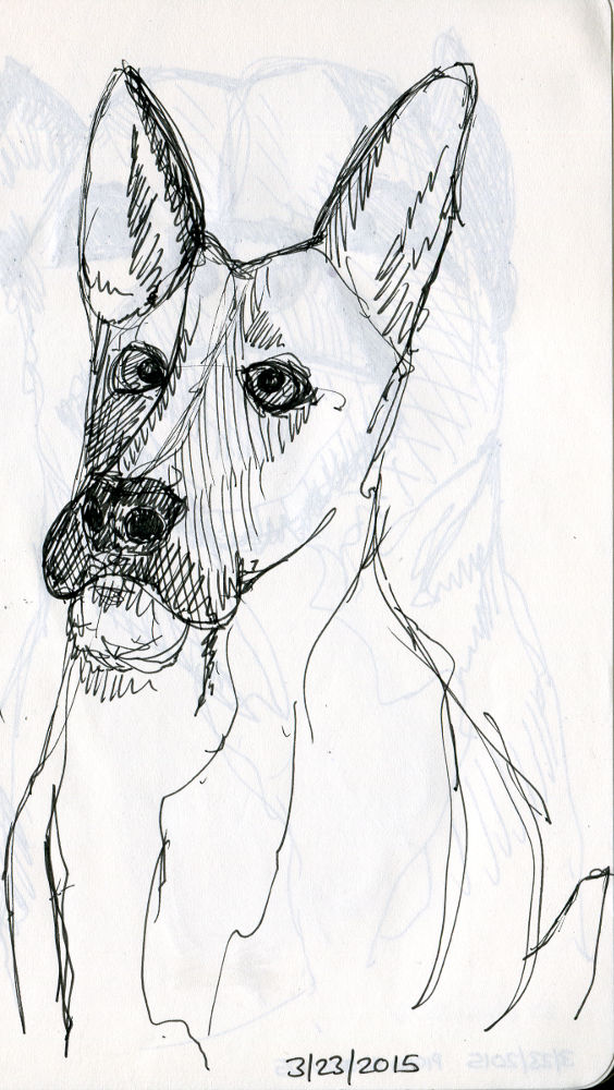 Sketches - Photobooth for Doges - 02