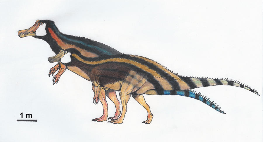 The gallery for --> Mourasuchus