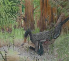 Buitreraptor gonzalezorum by yoult