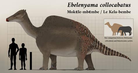 Ebelenyama collocabatus