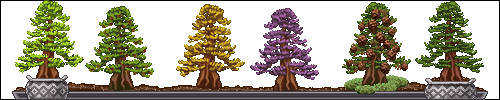 03a___redwood_by_miirshroom-dbe1z49.png