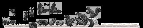 mammals01_by_miirshroom-dbm3r7c.png