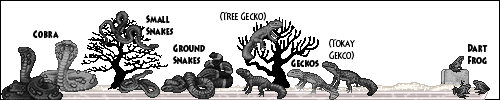 reptiles01_by_miirshroom-dbm3r86.png