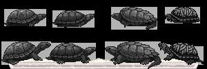 reptiles02_by_miirshroom-dbo6aao.png