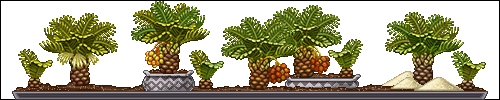 12b___date_palm_by_miirshroom-dc8b6ck.png