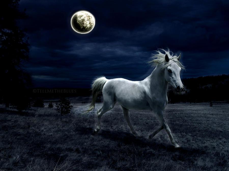 Hijo de la Luna by TellMeTheBlues
