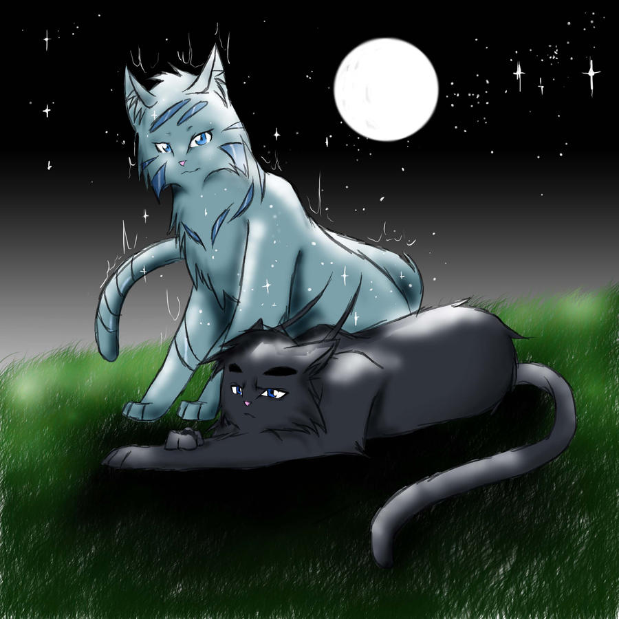 Warriors cats feathertail and crowfeather