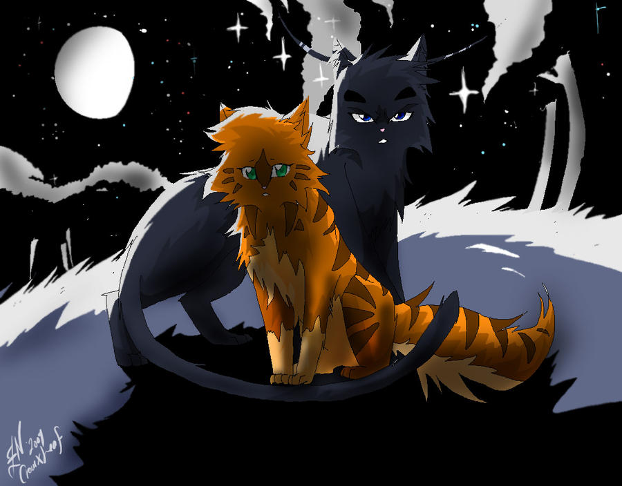 crowfeather and leafpool by whiteflamesoul on deviantart